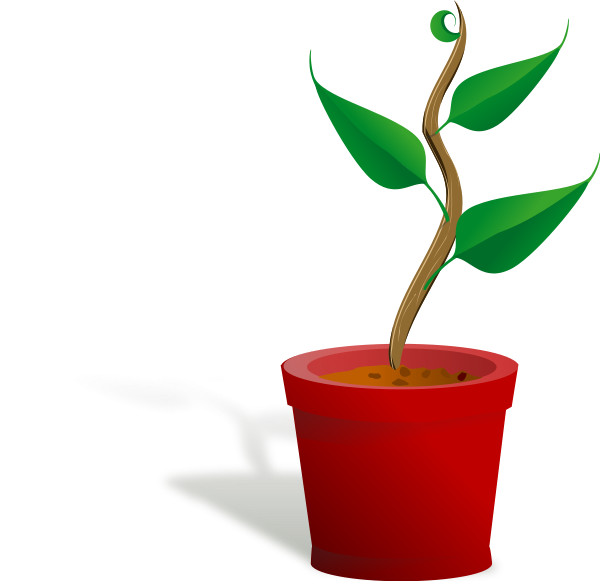 Plant clipart tall Growing #pT7Kzk5kc 10851607 in plant