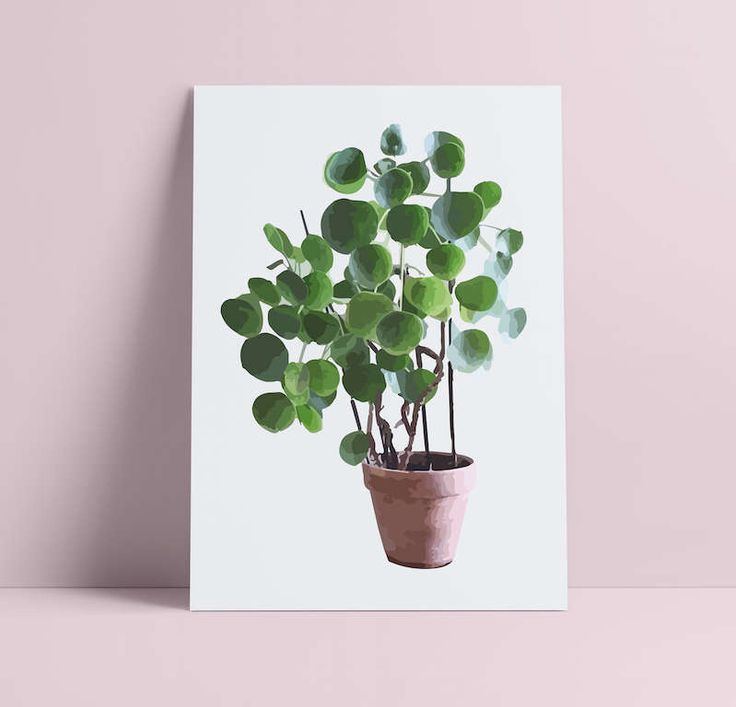 Drawn pot plant money sign Image Chinese Print Hipster Plant
