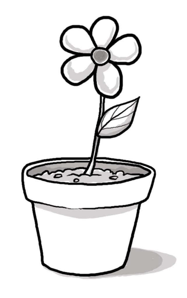 Drawn pot plant clipart Free Flower Flower Flowers Pot