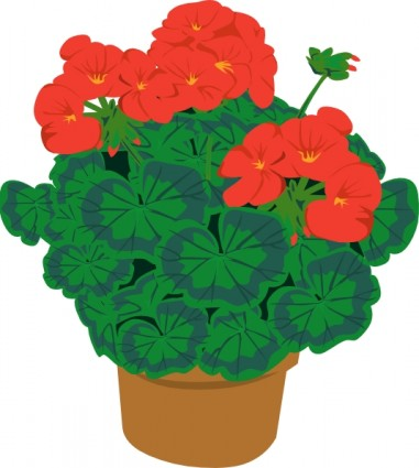 Drawn pot plant clipart Open Free Geranium Pinterest Picture