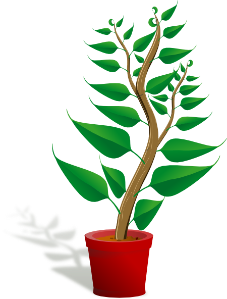 Plant clipart animated PNG: Clip · large In