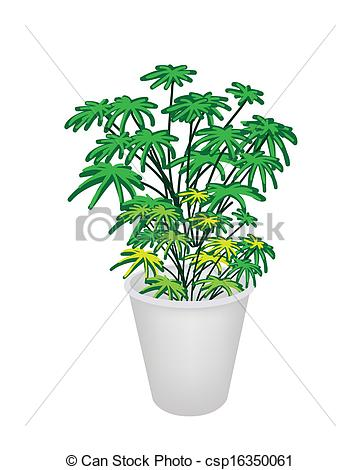 Drawn pot plant clipart Clip Flower Illustration Illustration of