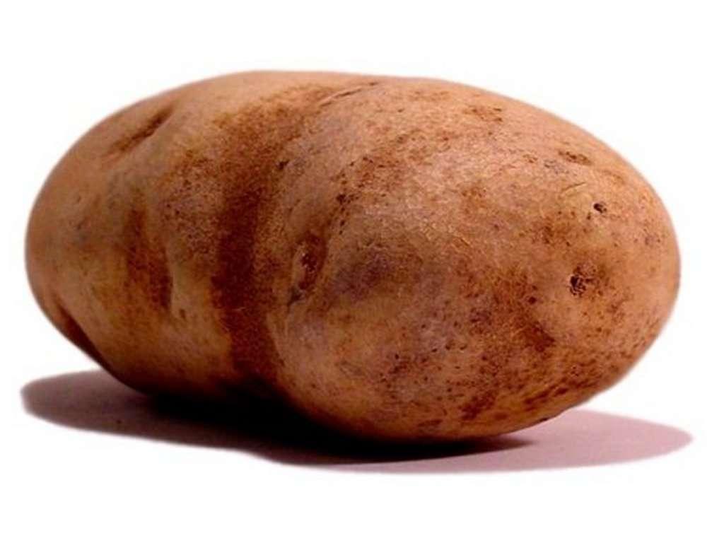 Potato clipart brown HD Potato New Wallpapers Cave
