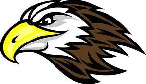 Prairie Falcon clipart #8