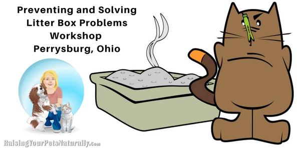 Problem clipart workshop And Behavior Ohio Perrysburg Box