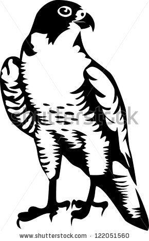 Dead clipart falcon Falcon 68 stock vector images