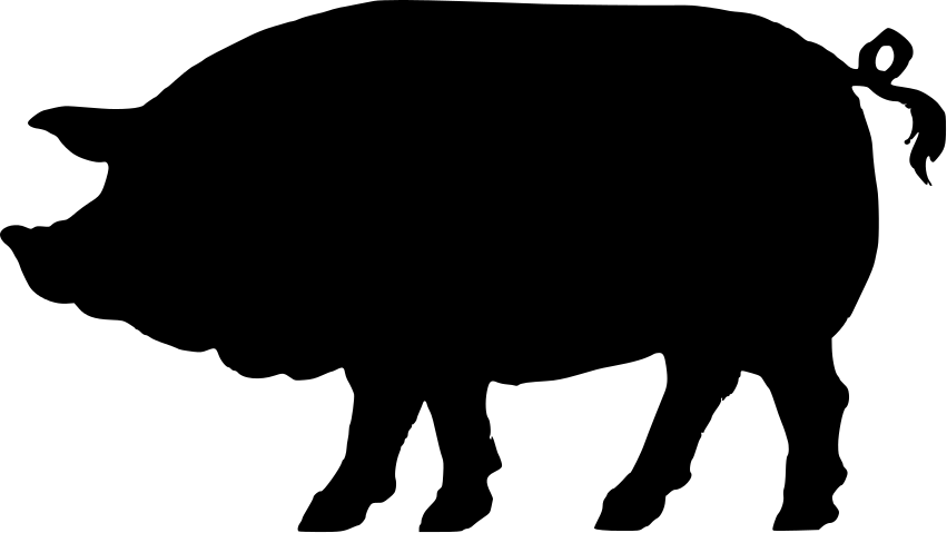 Shadow clipart pig #3