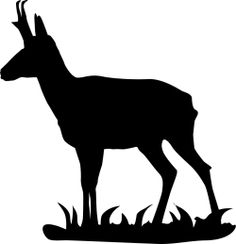 Pronghorn clipart Turkey Silhouette Pronghorn Decal Animal