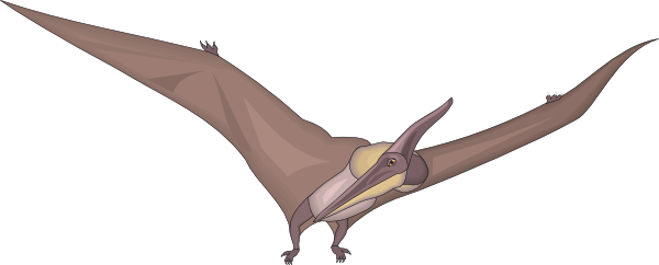 Pteranodon clipart #5