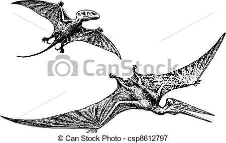 Pteranodon clipart Csp8612797 of  dinosaur or