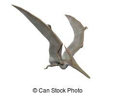 Pteranodon clipart #14