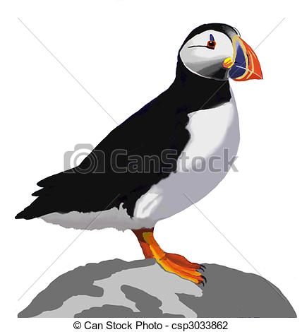 Puffin clipart Puffin #4 Fans Clipart #48