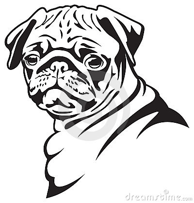 Drawn pug clip art Clip about item about vector