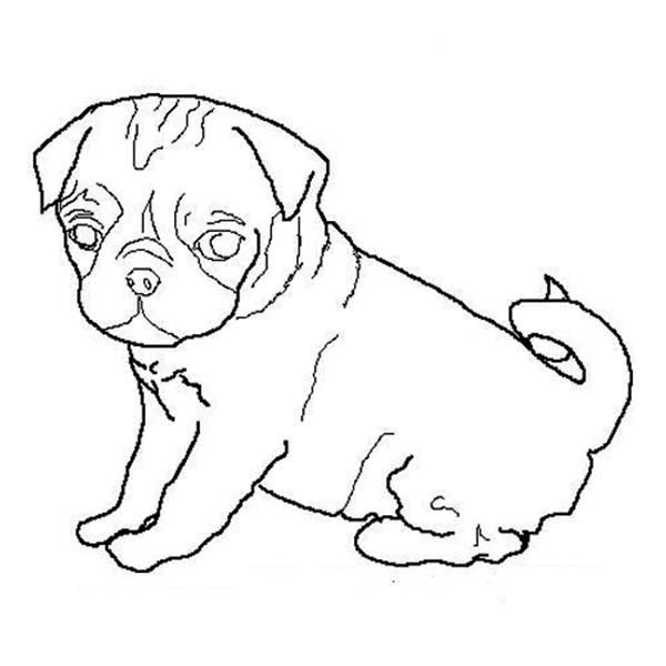 Drawn pug outline Art Luna Dog Clip Outline