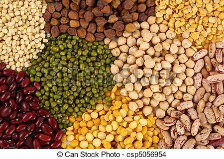 Bean clipart pulse Pulses  pulses csp5056954 Photo