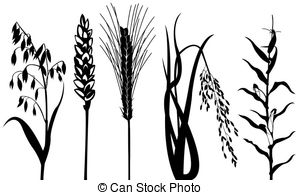 Pulse clipart cereal 716 Illustrations various EPS isolated