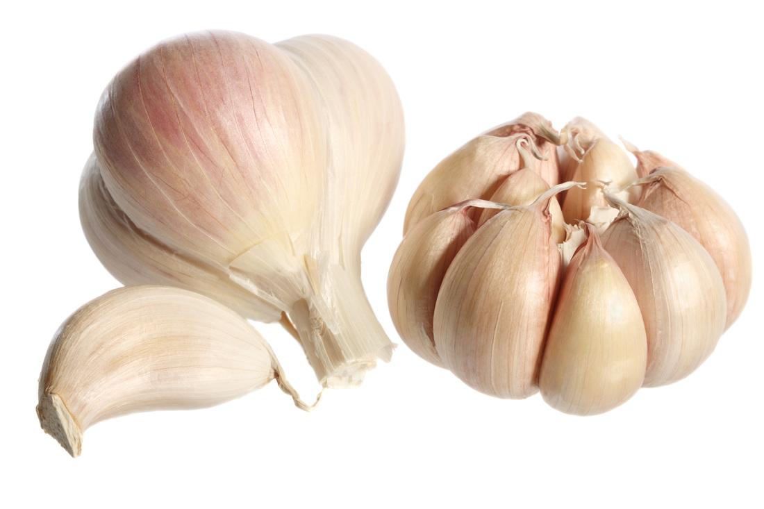Drawn onion Health Center Picture Alternative Development