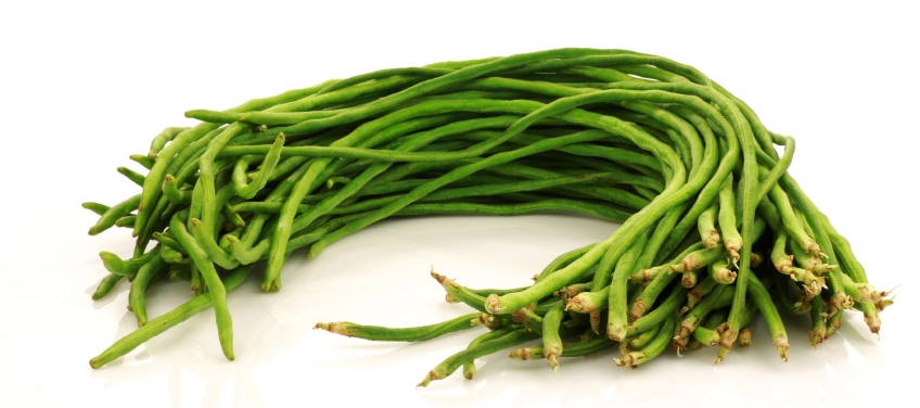 Beans clipart labanos Health Universal Picture Wellness Center
