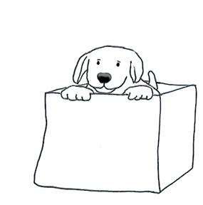 Box clipart funny Funny box Dog Dogs Cute