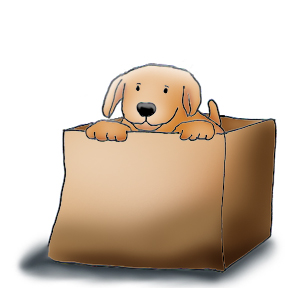 Box clipart funny Dogs Funny Cute Dog puppy