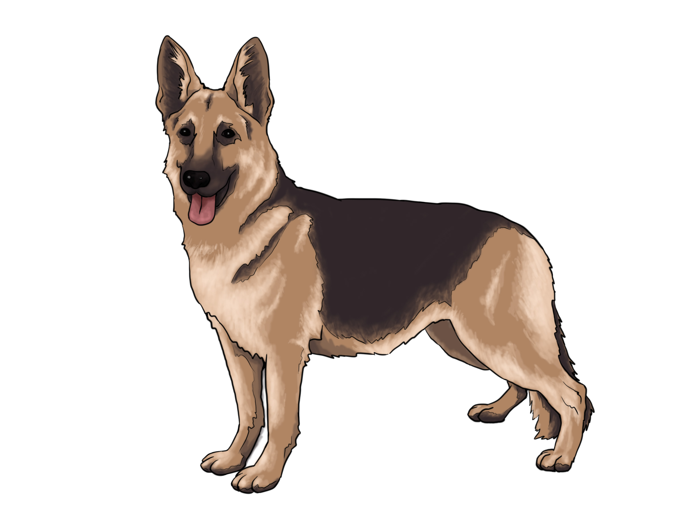 Realistic clipart puppy #12