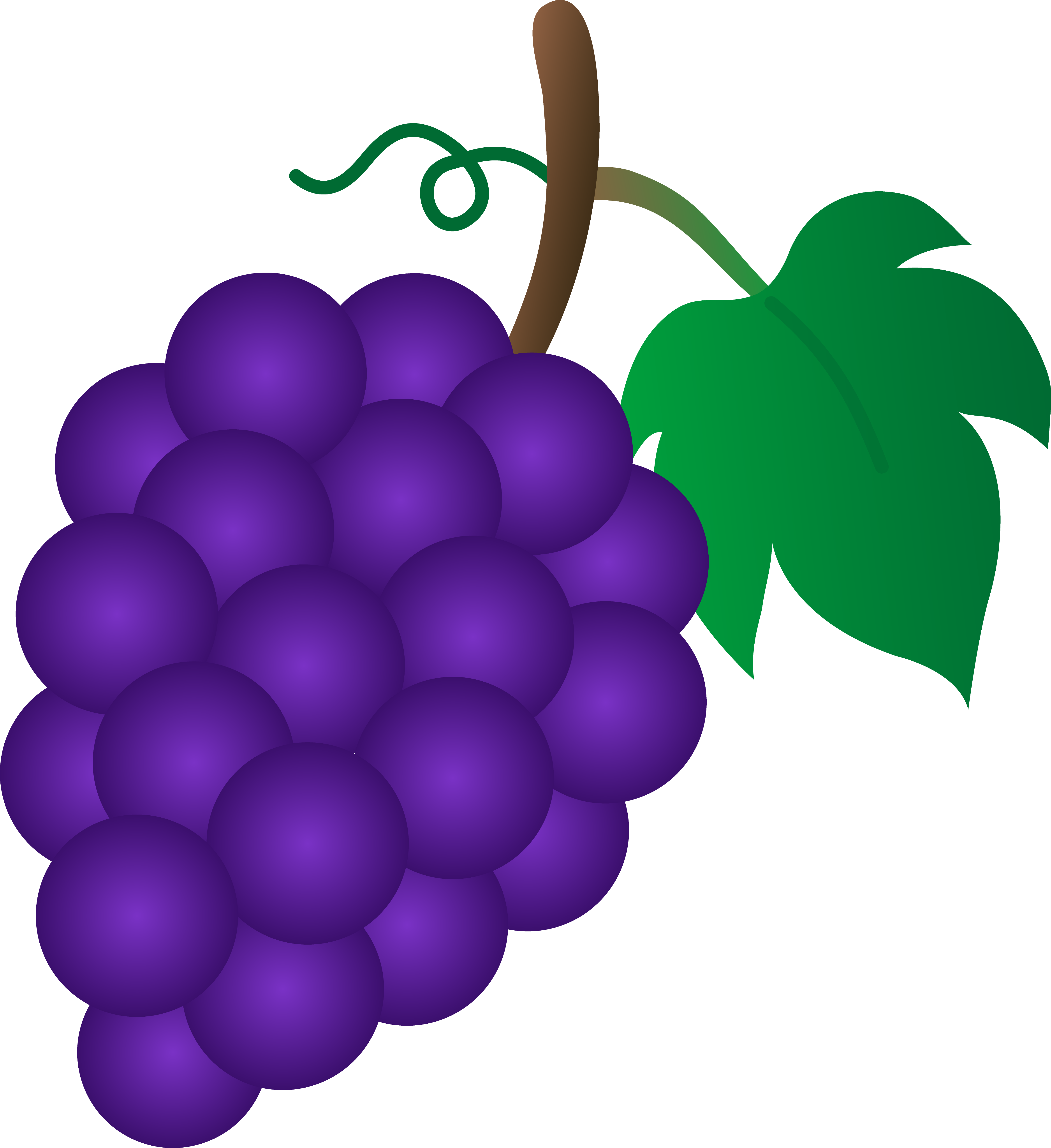 Grape clipart one Collection Clip art clip of