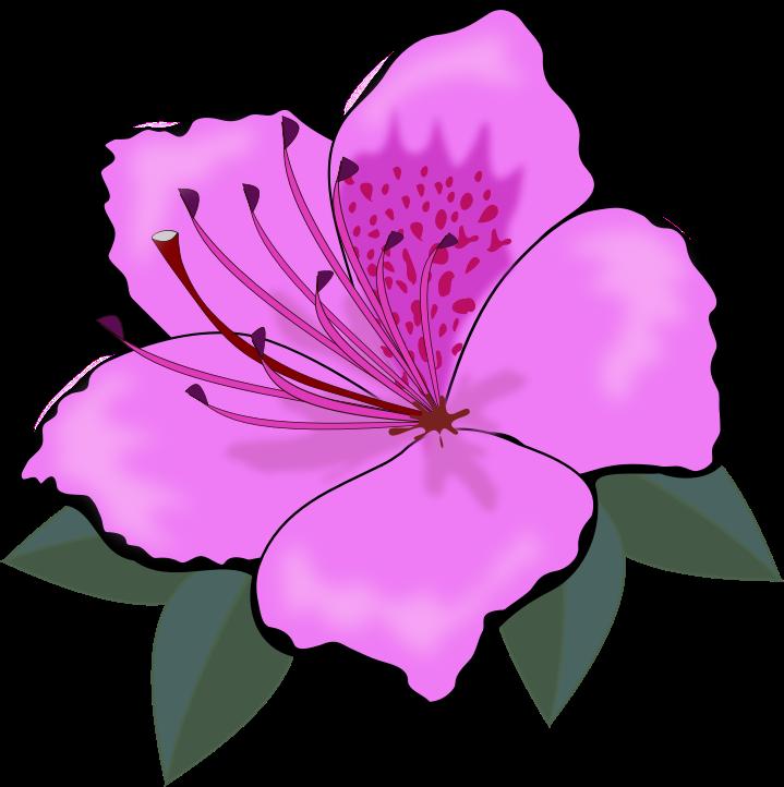 Purple Flower clipart Art Free Flower Purple