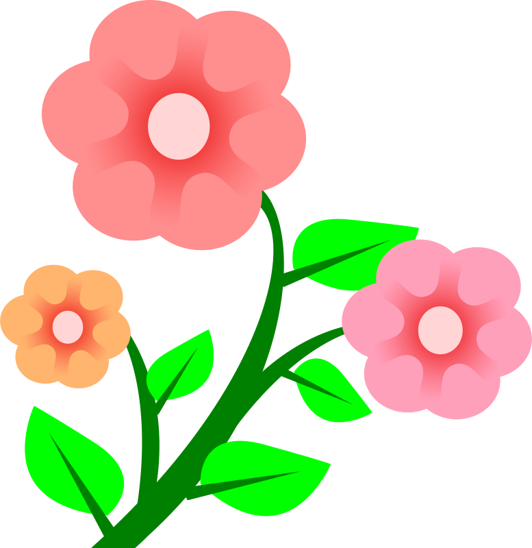 Blossom clipart bloom Clipart Pictures clipart Free 1001FreeDownloads