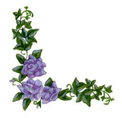 Purple Rose clipart Download Corner Clipart Corner Purple