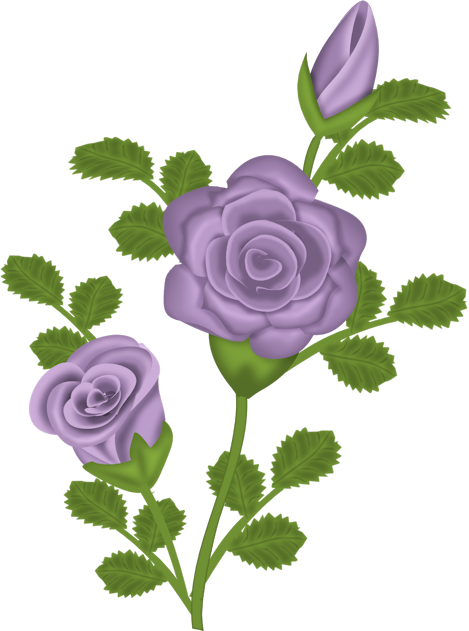 Purple Rose clipart View Purple Yopriceville Gallery full