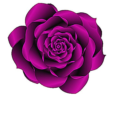 Purple Rose clipart Clipart » Clipart Roses »