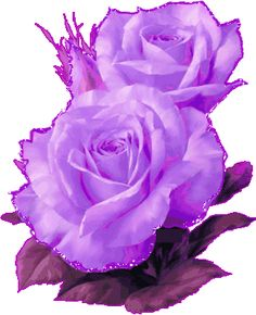 Purple Rose clipart animated Find in gif vase and