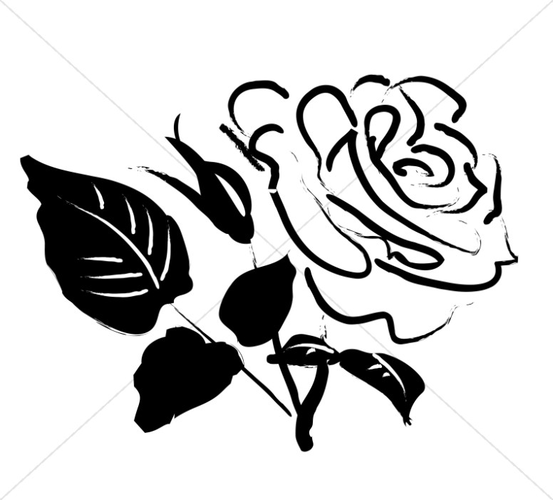 Drawn rose rose blossom Clipart Rose Purple Sketch Blossom
