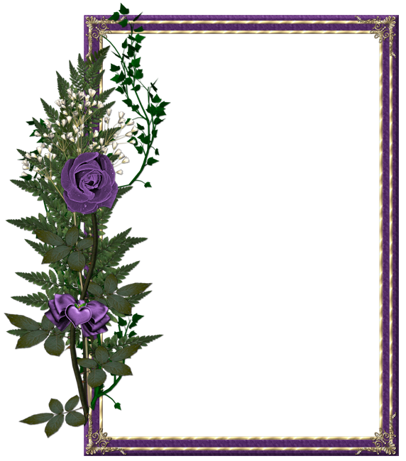 Purple Rose clipart frame #12