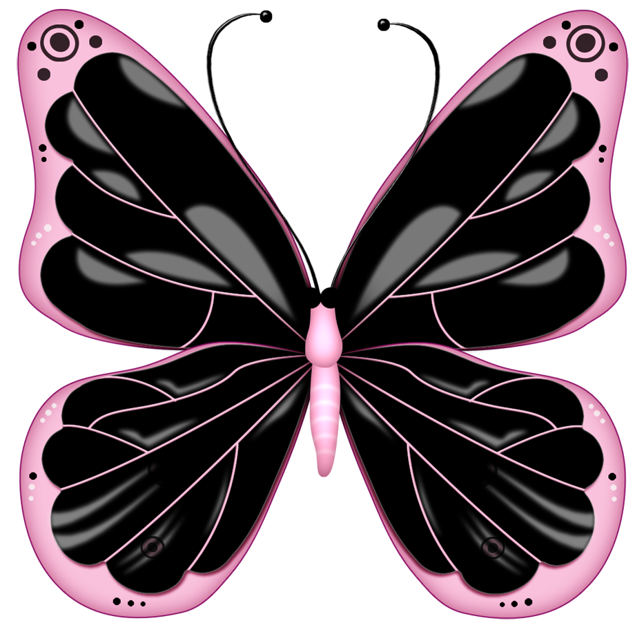 Pink Rose clipart pink black butterfly Decorations Butterfly png Clipart element