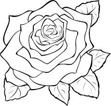 White Rose clipart svg Image about designs best