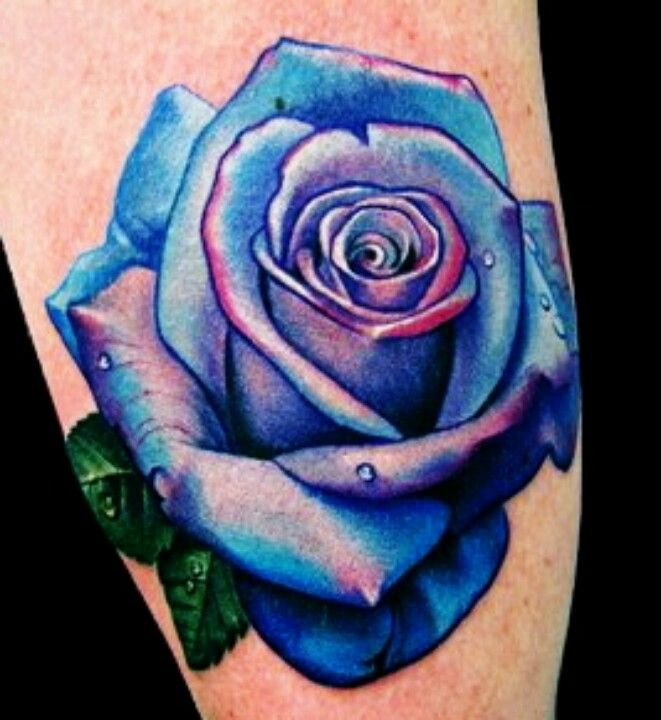 Drawn red rose purple rose Best Pictures And Ideas Pinterest