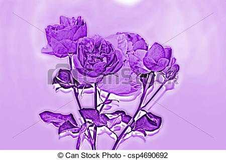 Purple Rose clipart violet #6