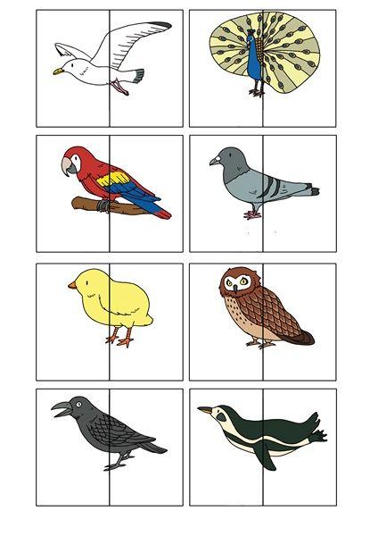 Puzzle clipart bird çocukların bütün konsantrasyon ler becerisini