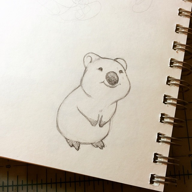 Quokka clipart For you little #quokka For