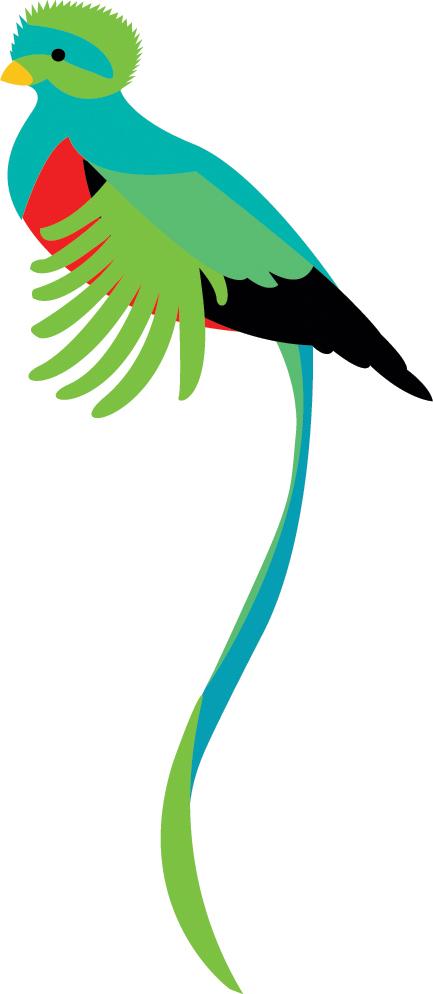 Quetzal  clipart By KCretcher Quetzal DeviantArt KCretcher