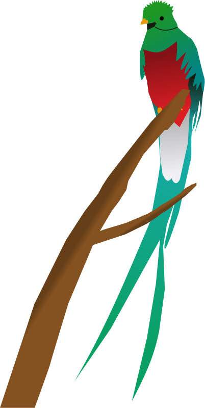 Quetzal  clipart Free Quetzal Clip  Art