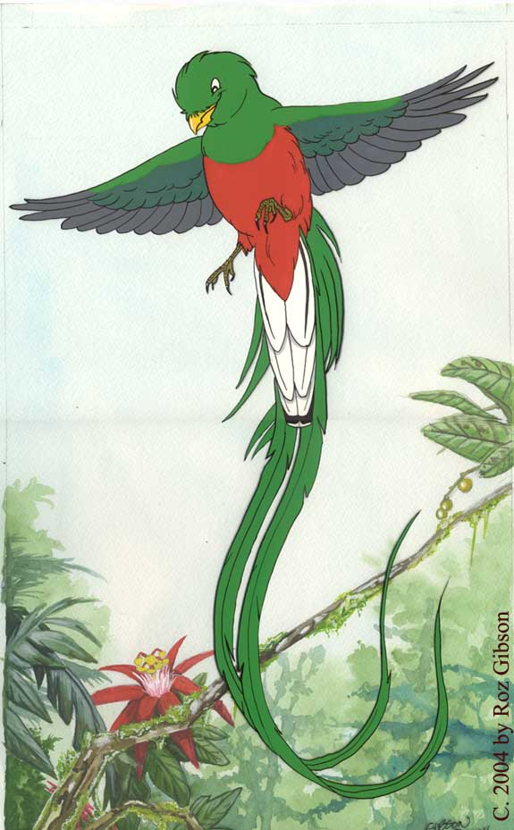 Quetzal  clipart Archive jpg by Roz Yerf
