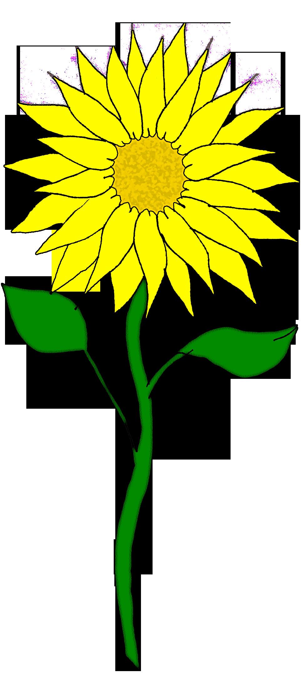 Yellow Flower clipart sunflower Art Art  Clip Download
