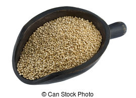 Quinoa clipart  on Stock grain Quinoa