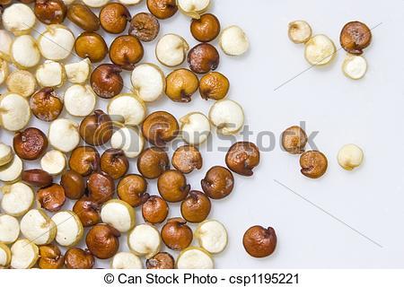 Quinoa clipart A Stock csp1195221 of