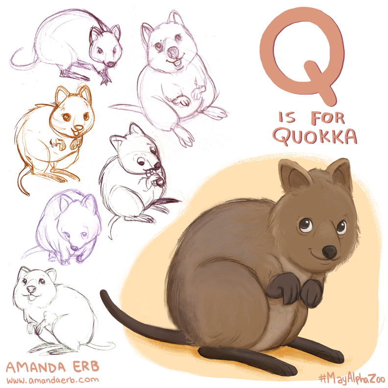 Quokka clipart Previous 26) / Thumbnails (1