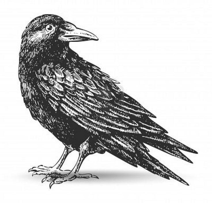 Dead clipart raven Jpg drawing (1200×1152) best raven