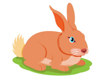 Rabbit clipart #12