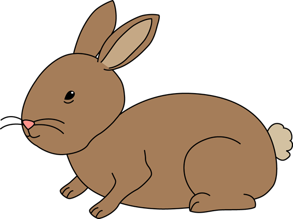 Rabbit clipart #13